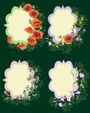 Cadres de fleur Photos stock