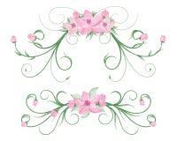 Cadres de fleur d'aquarelle Image stock