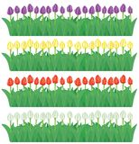 Cadres de fleur réglés (vecteur, CMYK) illustration stock