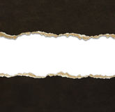 Cadres de papier déchirés Photos stock