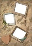 Cadres de photo, coeur, herbier Image libre de droits