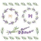 Cadres et éléments de fête réglés avec des fleurs de lavande pour la carte de voeux Illustration botanique illustration stock