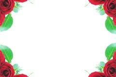 Cadres faisants le coin roses de rouge Photographie stock