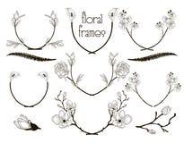 Cadres floraux noirs des textes de vecteur, branches, lauriers illustration de vecteur