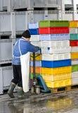 Cadres mobiles dans l'entrepôt frigorifique Photo stock