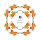 Cadres ronds de vecteur avec le pamplemousse et la fleur Photo libre de droits
