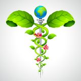 Caduceus sign with Leaf and Flowers. Vector illustration of medical Caduceus sign with leaf Stock Photography