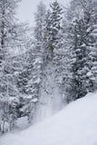 Caduta 3 della neve Fotografia Stock