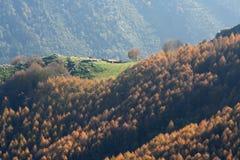 Caduta alla montagna Fotografia Stock Libera da Diritti