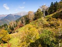 Caduta in anticipo in alpi giapponesi - viste dal ropeway di Shin-Hotaka Fotografie Stock