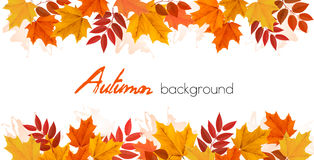 Caduta Autumn Colorful Leaves Background illustrazione vettoriale
