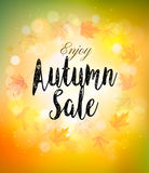 Caduta Autumn Colorful Sale Background Vettore illustrazione di stock