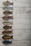 Caduta dei pesci delle terraglie sulla parete di legno immagine stock libera da diritti