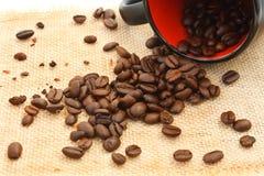 Caduta del caffè fotografie stock