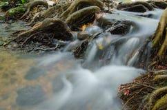 Caduta dell'acqua Fotografie Stock Libere da Diritti