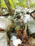 Caduta dell'acqua Fotografia Stock Libera da Diritti