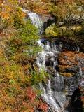Caduta dell'acqua in autunno fotografia stock libera da diritti