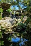 Caduta dell'acqua con gli alberi verdi Immagine Stock