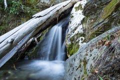 Caduta dell'acqua della montagna Fotografie Stock