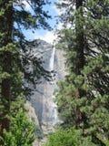 Caduta dell'acqua di Yosemite Fotografia Stock