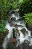 Caduta dell'acqua in foresta Fotografia Stock
