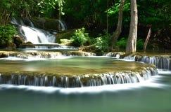 Caduta dell'acqua in foresta profonda Immagine Stock