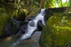 Caduta dell'acqua in giungla Immagini Stock Libere da Diritti