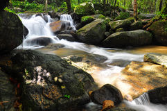 Caduta dell'acqua in natura Fotografia Stock
