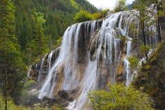 Caduta dell'acqua sonora dagli alberi verdi Immagini Stock