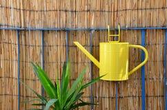 Caduta dell'annaffiatoio del metallo giallo sull'inferriata del balcone accanto alla pianta verde Fotografie Stock