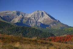 Caduta della montagna rocciosa Fotografia Stock