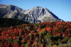Caduta della montagna rocciosa Immagini Stock Libere da Diritti