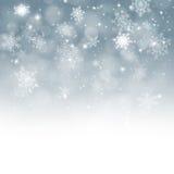 Caduta della neve Immagine Stock Libera da Diritti