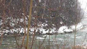 Caduta della neve Il paese delle meraviglie di inverno nevicata nevosa natura di legni degli alberi forestali Priorità bassa di i stock footage