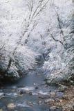 Caduta della neve lungo il piccolo fiume del piccione Immagini Stock