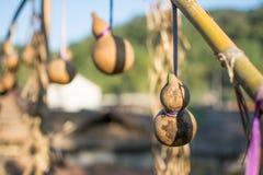 Caduta della zucca a fiaschetta con bambù Fotografia Stock