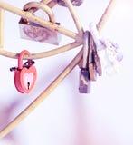 Caduta delle serrature sul vostro giorno delle nozze Fotografia Stock Libera da Diritti