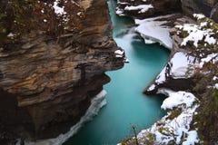 Caduta di Athabasca alla sorgente fotografia stock libera da diritti