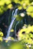Caduta dorata dell'acqua Immagini Stock