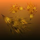 Caduta dorata delle piume del fondo Fotografie Stock