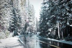 Caduta e viaggi stradali della neve fotografia stock libera da diritti