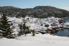 Caduta fresca della neve Fotografia Stock