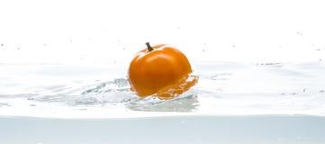 Caduta gialla del pomodoro in acqua Foto nell'azione Ragno d'argento Fondo bianco isolato Immagini Stock Libere da Diritti
