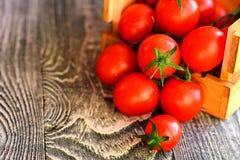 Caduta matura rossa dei pomodori dalla scatola Vista rustica Fotografie Stock Libere da Diritti