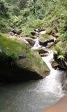 Caduta naturale dell'acqua fotografie stock