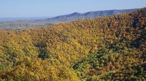 Caduta nelle montagne di Ridge blu Fotografie Stock