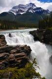 Caduta perfetta dell'acqua di Athabasca del manifesto bella nel parco nazionale del diaspro Canadese Montagne Rocciose in Alberta fotografia stock libera da diritti