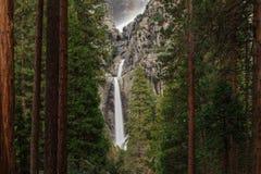 Caduta più bassa di Yosemite vista attraverso gli alberi fotografia stock libera da diritti