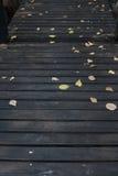 Caduta secca delle foglie sul sentiero costiero di legno Fotografia Stock