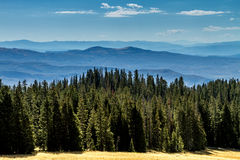 Caduta in Steamboat Springs Colorado Immagine Stock Libera da Diritti